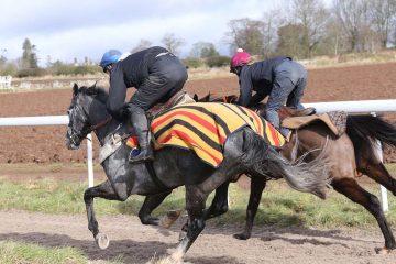 steven-and-rhona-gallop